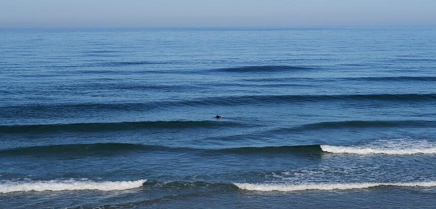 Surfen lernen-perfekte Wellen für Surfanfänger