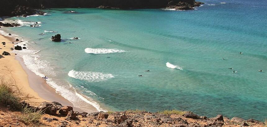 Sind Hainangriffe bei klarem Wasser unwahrscheinlich