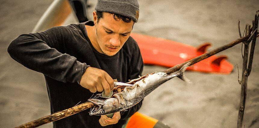 Fische Grillung