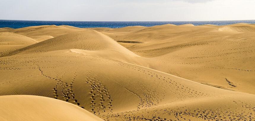 Auf Gran Canaria surfen_Dünen Maspalomas