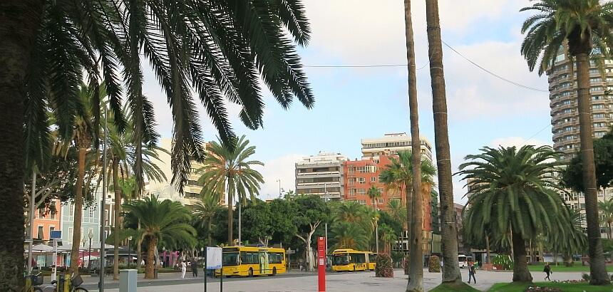 Guaguas auf Gran Canaria