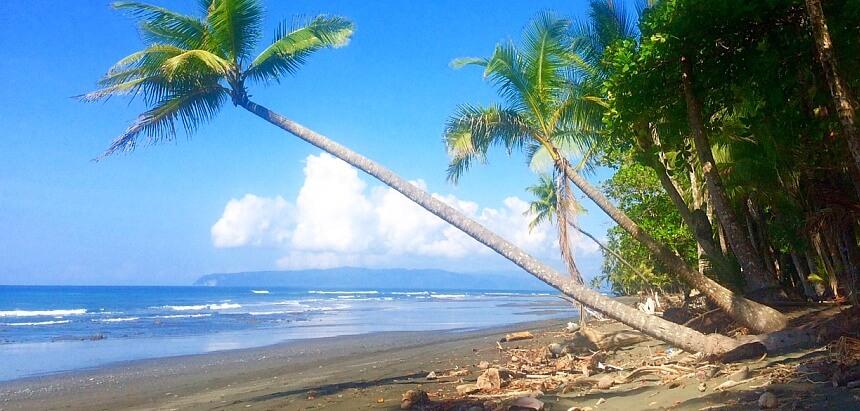Surfurlaub in Costa Rica surfen