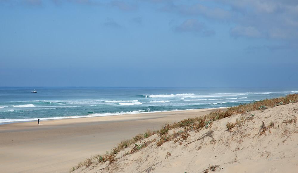 Beste Reisezeit zum surfen in Frankreich