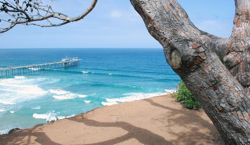 La Jolla in San Diego bietet viele erstklassige Surfspots